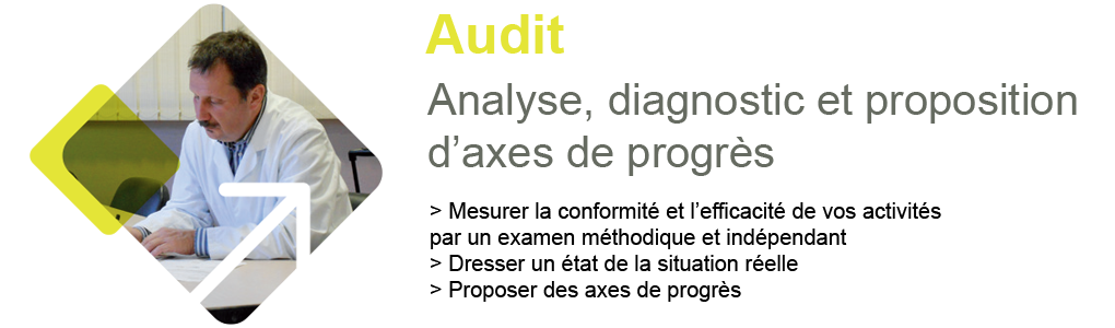 AUDIT : Analyse, diagnostic et proposition d'axes de progrès